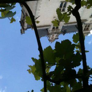 Chateau-HenriIV-GastonPhoebus-Pau-26415